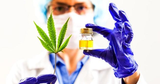 Cannabis schmerzstillende wirkung